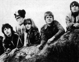 FГјnf Freunde Serie 1978 Stream